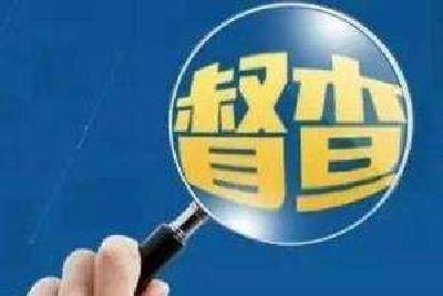 襄阳市对各县(市、区)社会保险经办风险管理工作进行再次督查