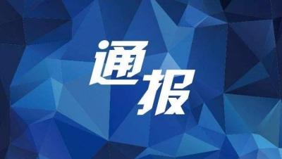 樊城警方抓获一暴力讨债非法拘禁团伙主要涉案嫌疑人