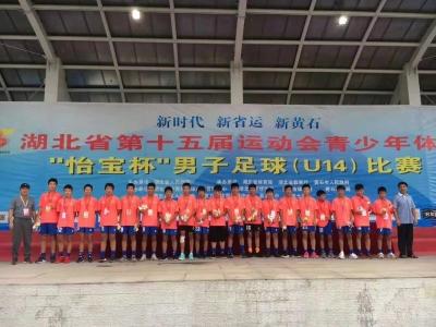 襄阳足球圆梦第十五届省运会
