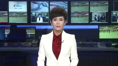 【V视】霸占集体堰塘高价卖水 老河口一村霸被逮捕