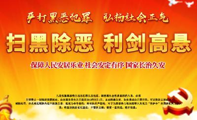 """樊城:""""三变""""凸显!组织部门在扫黑除恶专项斗争中的作为"""
