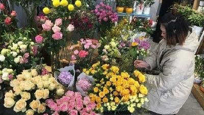 春节期间花卉市场品类繁多可以满足市民各种需求