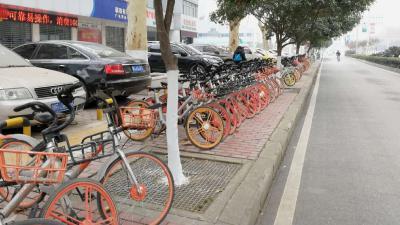 共享单车更名 市民担忧押金和充值问题