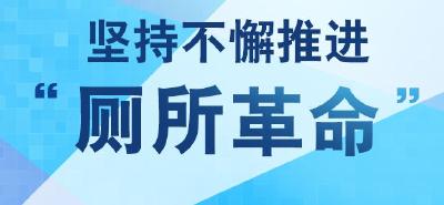 """新闻发布厅 2018年""""十件实事""""完成情况之六 大力开展""""厕所革命"""" 实施城乡清洁工程"""