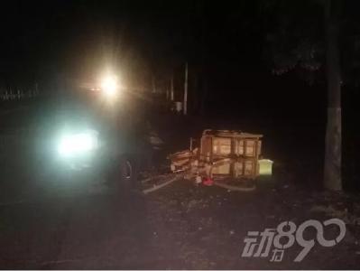 襄阳一黑车司机撞人后逃跑,50万保险打水漂.....