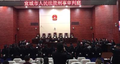 宜城法院公开审理李某等15人组织领导参加黑社会性质组织罪一案