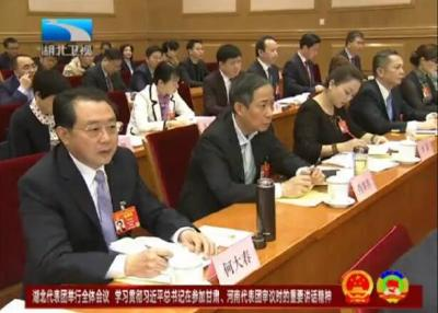 湖北代表团举行全体会议 学习贯彻习近平总书记在参加甘肃、河南代表团审议时的重要讲话精神
