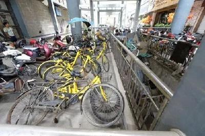 丑态百出!再不整改,这些共享单车将被逐出襄阳