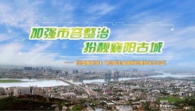加强市容整治 扮靓襄阳古城——《中国建设报》访湖北省襄阳市副市长龙小红