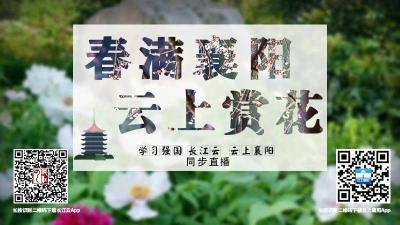 """【回放】居家抗疫 不负春光!""""春满襄阳·云上赏花"""""""