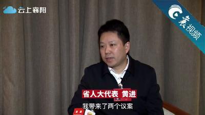 """【两会好声音】黄进:""""都市农业""""助推襄州高质量发展"""