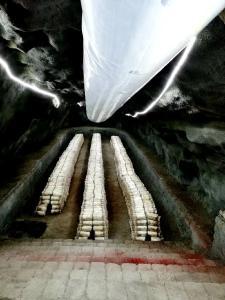 尧治河村大力开发矿洞食用菌产业