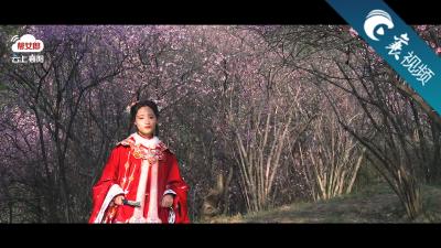 【襄视频】又是花开时节,当汉服相遇鹿门山的春天