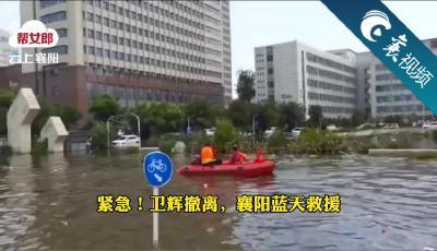 【襄视频】河南卫辉告急,襄阳蓝天救援队紧急支援病人转移