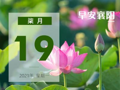 早安·襄阳 |最差!鄂FX9808、米公小学、襄州区行政服务中心…被集中曝光!