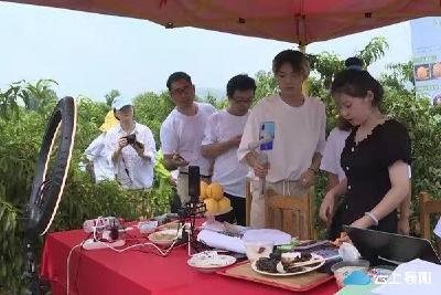 宜城:将税收政策红利化为乡村振兴动力