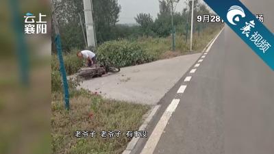 【襄视频】正能量典范!热心的哥毫不犹豫扶起摔倒老人!