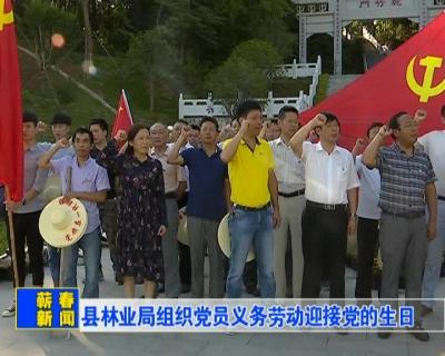 【新闻视频】县林业局组织党员义务劳动迎接党的生日
