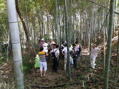 蕲春县正式启动第五次森林资源普查工作