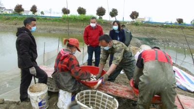 视频| 县农业农村局破解水产品滞销难题