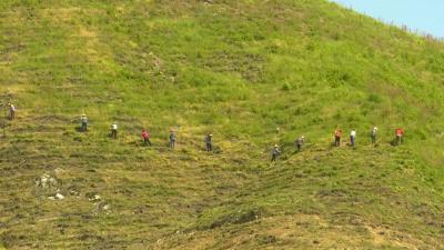视频丨县林业局:荒山变绿补齐生态短板 推进稳定长效生态扶贫