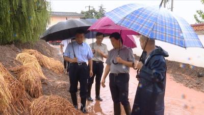 视频丨詹才红检查指导江堤防汛