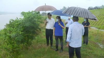 视频丨赵少莲检查长江干支堤防汛工作 要求做到六个到位 确保安全度汛