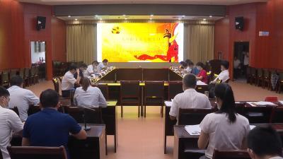 视频丨詹才红参加县政府办机关支部主题党日活动