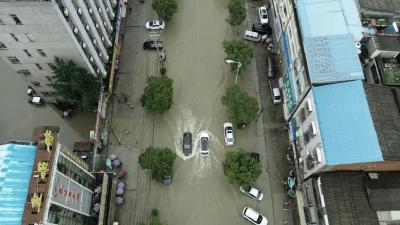 视频丨漕河城区水往哪里去?
