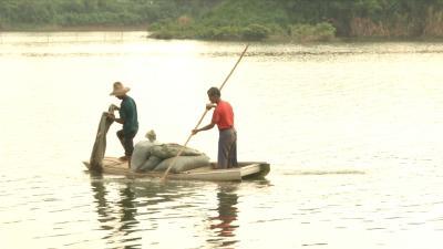 视频丨县农业农村局打响全县渔业抗灾复产攻坚战