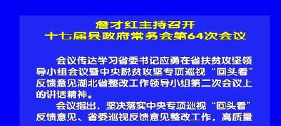 视频丨詹才红主持召开十七届县政府常务会第64次会议