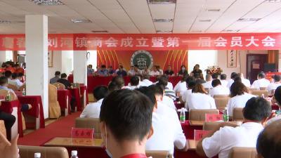 视频丨刘河镇商会成立