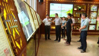视频丨我县创建国家现代农业产业园成效明显