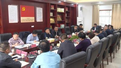 视频丨詹才红督办李时珍国际医药港新项目落地相关工作