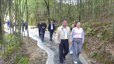 视频丨县人大常委会视察全县国家中医药健康旅游示范区创建工作