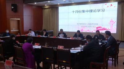 视频丨县政府党组理论学习中心组集中学习