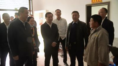 """视频丨詹才红督办""""千人千户大会战"""""""