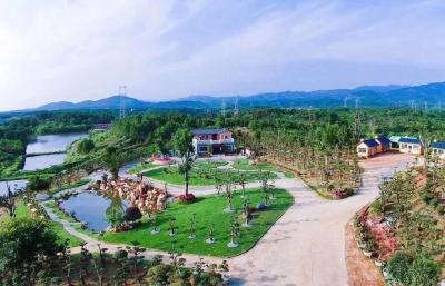 省人大代表李雄文:让涉农企业成为乡村振兴的主力军