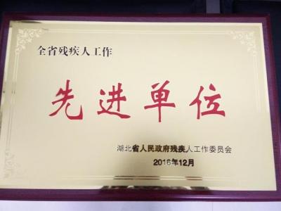 """通城县残疾人联合会荣获2016年""""全省残疾人工作先进单位"""""""