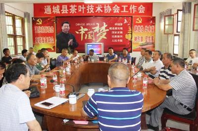 通城县茶叶技术协会举行全体会员大会 选举产生新一届协会领导班子成员