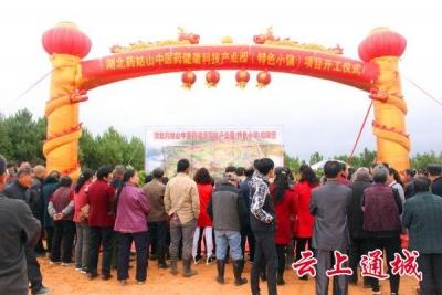 湖北药姑山中医药健康科技产业园(特色小镇)今日举行开工仪式