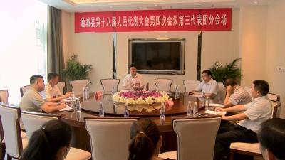 熊亚平、刘明灯参加县十八届人大四次会议代表团审议