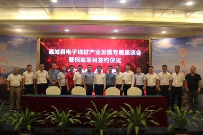 通城:谋划打造百亿电子线材产业 总投资5.9亿元10个项目东莞签约