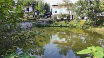 【最清洁屋场系列之二】石南镇梅港村:不等不靠 美丽屋场齐心造