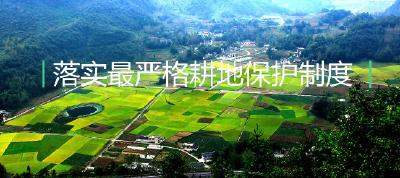 宣传片丨落实最严格耕地保护制度