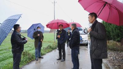 县人大常委会调研全县农业农村发展情况