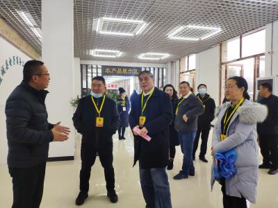 咸宁市五届人大通城代表团开展视察调研