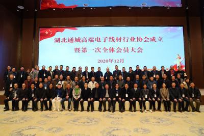 通城高端电子线材行业协会成立