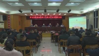通城县自然资源和规划局学习贯彻党的十九届五中全会精神