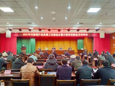 通城:加快中医药产业持续健康发展  打造全国中医药产业大县